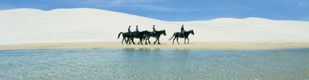 Sahara Trails Horse Riding